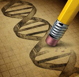 gene editing engineering