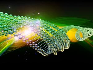 amplifying DNA