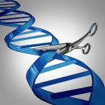 29/09/15: CRISPR Webinar