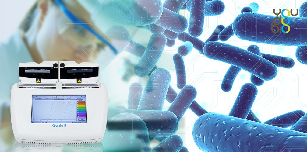 Detect Harmful Bacteria in Minutes