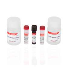 SOD Activity Assay Kit