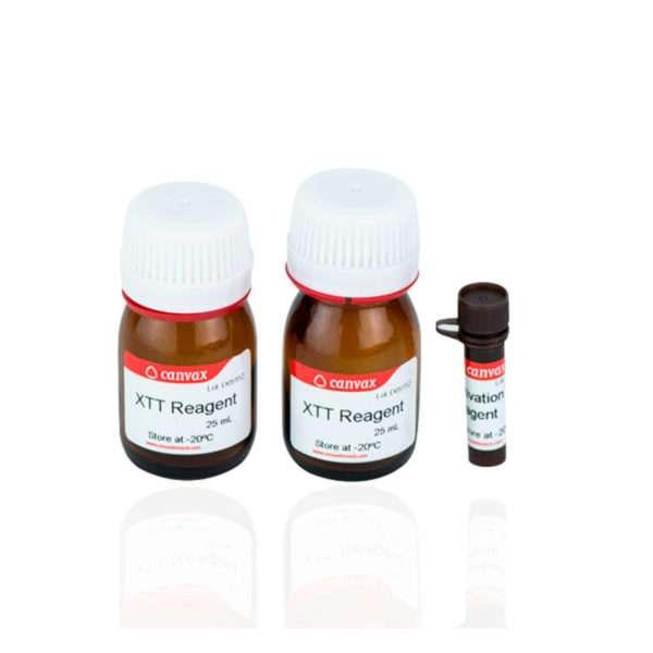 XTT Cell Proliferation Assay Kit