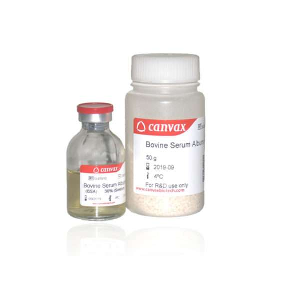 Bovine Serum Albumin (BSA)